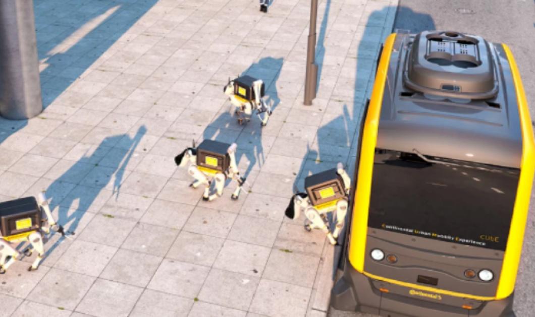 Αυτό είναι το ντελίβερι του μέλλοντος - Θα γίνεται από σκυλιά ρομπότ! (βίντεο) - Κυρίως Φωτογραφία - Gallery - Video