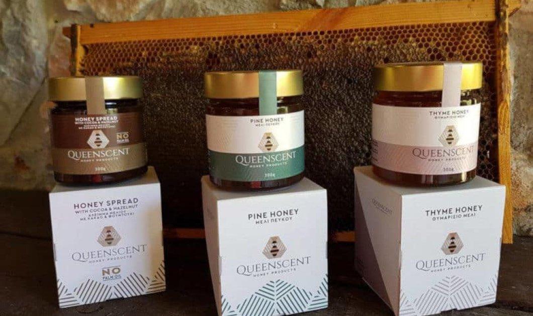 Made in Greece η Queenscent: Spread μελιού με κακάο και φουντούκια, πευκόμελο & θυμαρίσιο μέλι διατροφικοί θησαυροί στο τραπέζι μας - Κυρίως Φωτογραφία - Gallery - Video