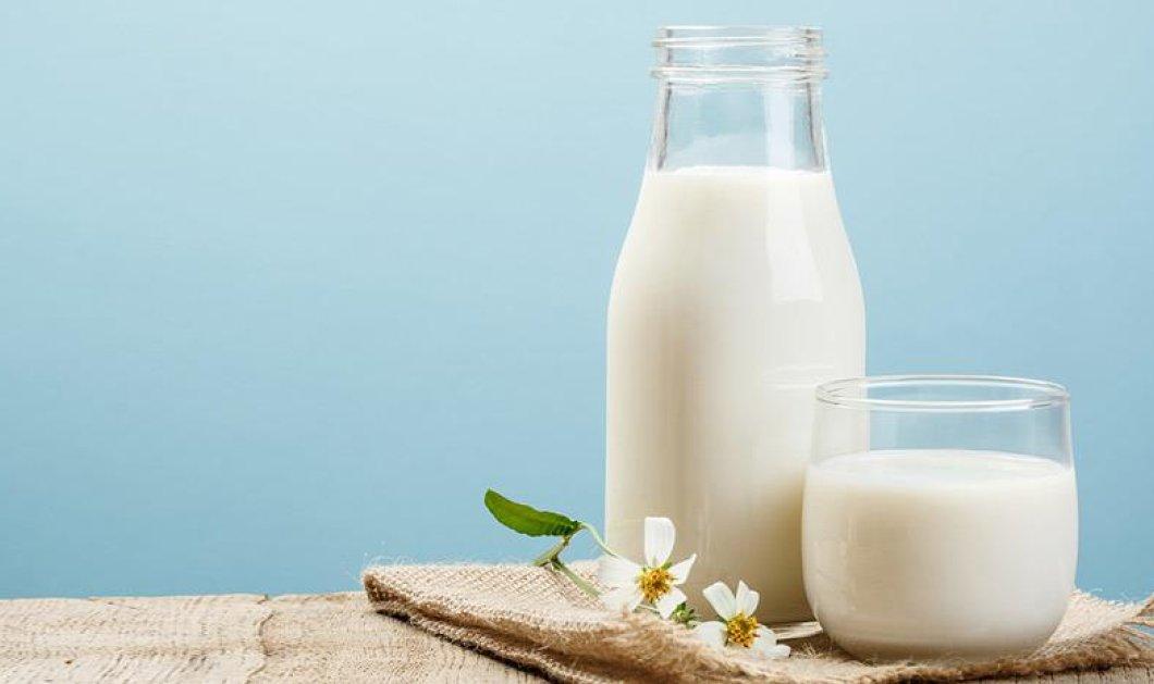Τα γαλακτοκομικά προϊόντα είναι ο απόλυτος σύμμαχός σας στο αδυνάτισμα - Δείτε με ποιον τρόπο - Κυρίως Φωτογραφία - Gallery - Video