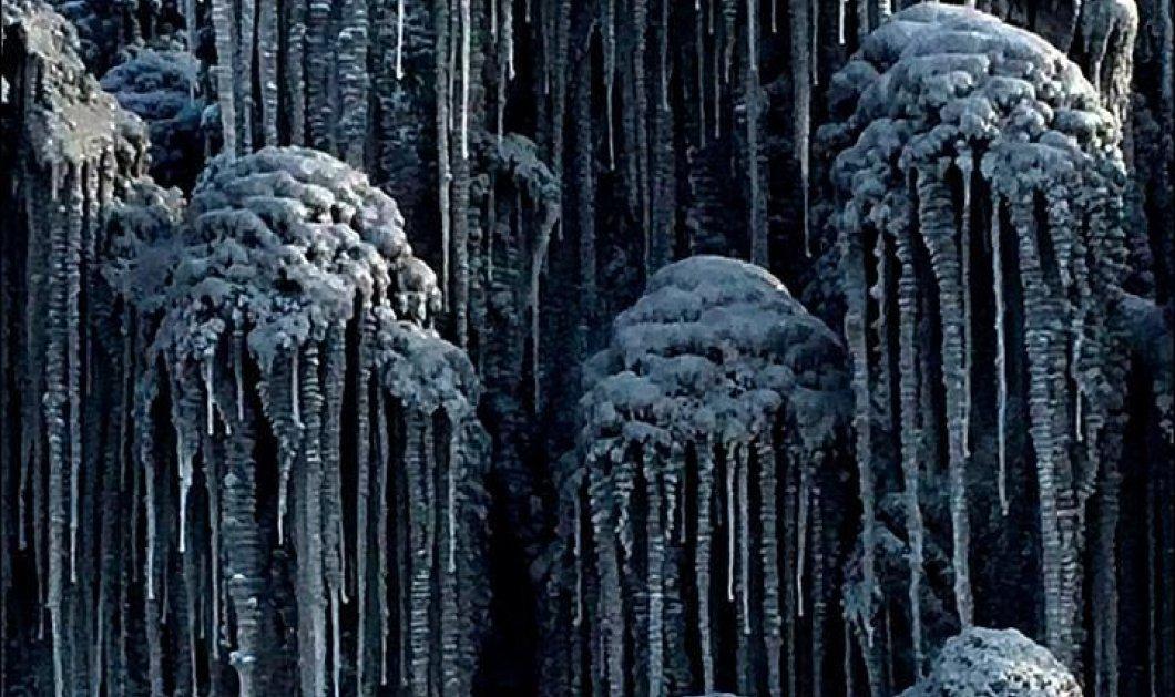 Σιβηρία: Ξαφνικά άρχισε να χιονίζει κι όλα μαύρισαν! Δεν έχετε ξαναδεί μαύρο χιόνι (βίντεο) - Κυρίως Φωτογραφία - Gallery - Video