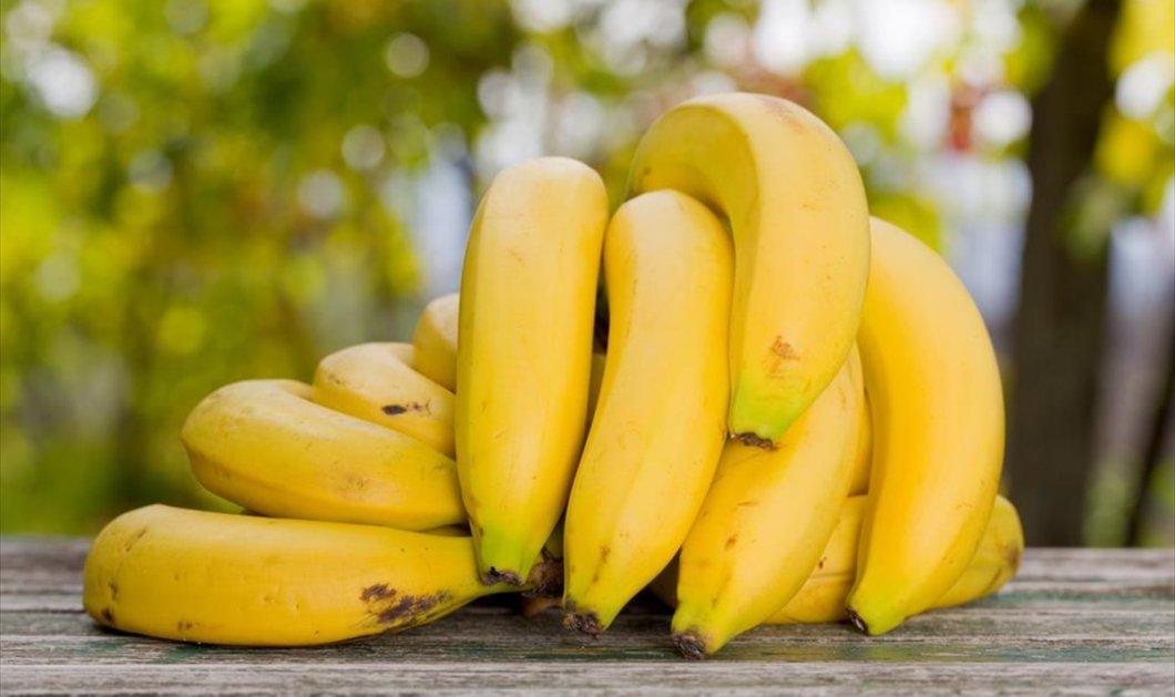 Μπανάνα: Διάβασε 10 πράγματα για το τροπικό φρούτο που ίσως να μην γνώριζες - Κυρίως Φωτογραφία - Gallery - Video