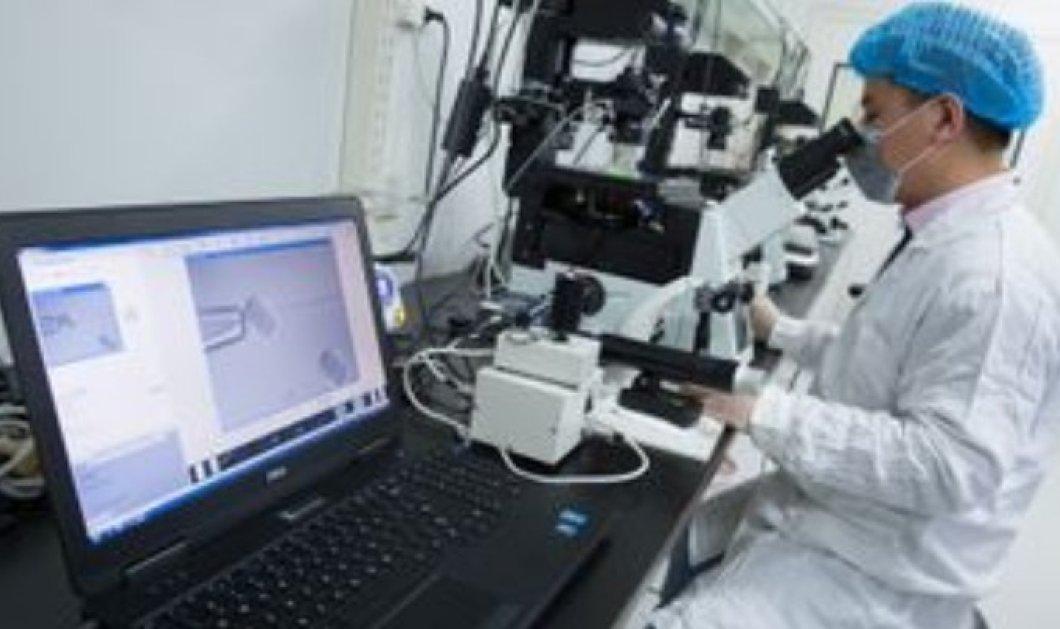 Ένα βήμα πιο κοντά οι Ιάπωνες στη δημιουργία ανθρώπινων νεφρών για μεταμόσχευση - Κυρίως Φωτογραφία - Gallery - Video
