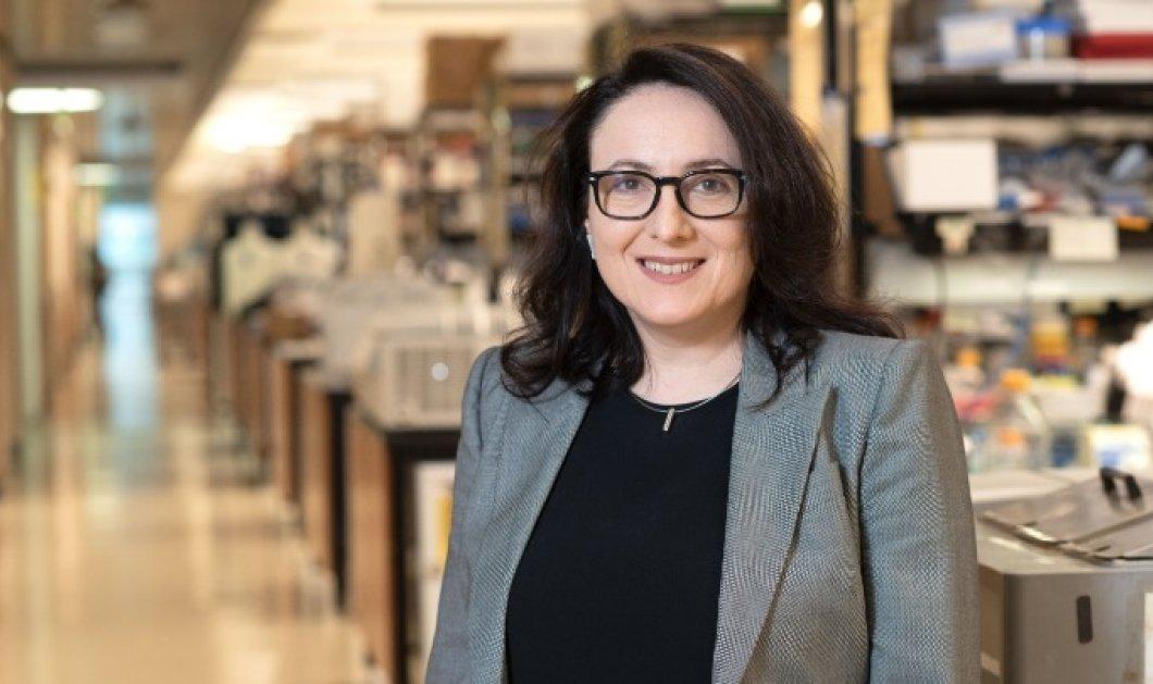 Κατερίνα Ακάσογλου: Μεγάλο βραβείο για την κορυφαία Ελληνίδα ερευνήτρια -Πως εξελίσσει τη θεραπεία για τη σκλήρυνση κατά πλάκας - Κυρίως Φωτογραφία - Gallery - Video