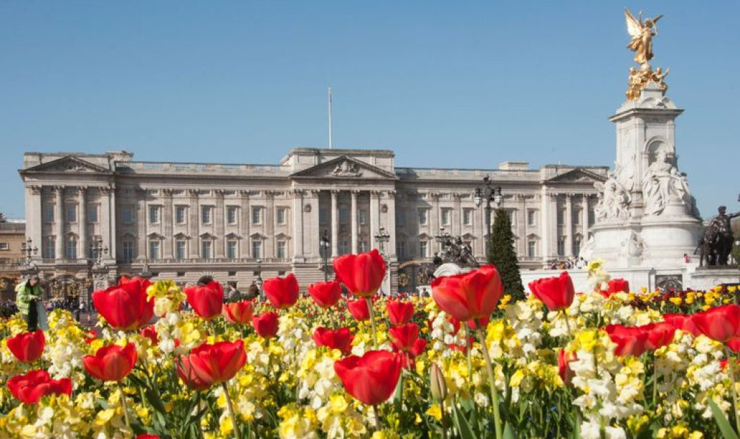 Tο παλάτι του Μπάκιγχαμ άνθισε! Πώς υποδέχεται την Άνοιξη η Βασιλική οικογένεια (φωτό) - Κυρίως Φωτογραφία - Gallery - Video