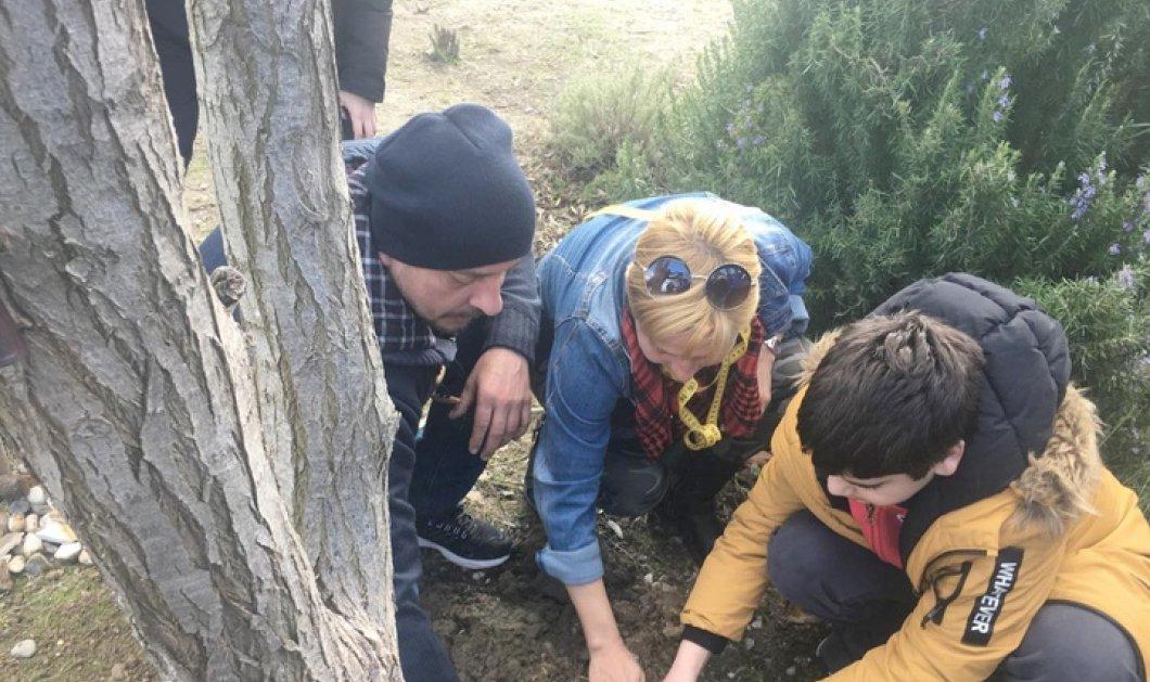 Good News: Πάρκο με δέντρα και βότανα που αναγράφονται στη Βίβλο δημιούργησαν μαθητές γυμνασίου στη Ρόδο (φώτο) - Κυρίως Φωτογραφία - Gallery - Video