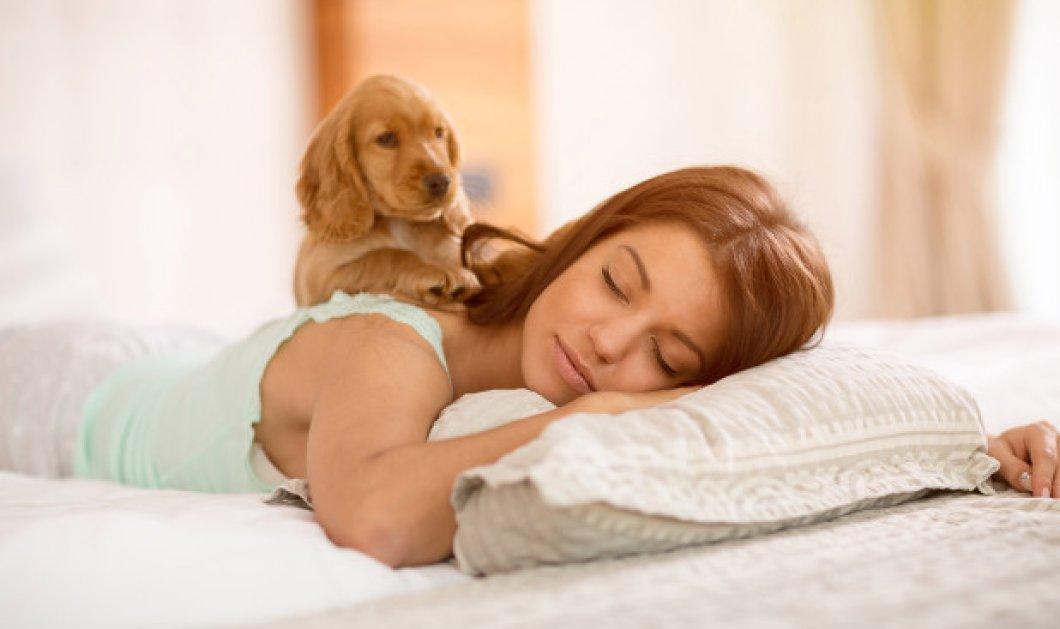 Παγκόσμια Ημέρα Ύπνου: Πόσες ώρες πρέπει να κοιμόμαστε καθημερινά ανάλογα με την ηλικία μας;  - Κυρίως Φωτογραφία - Gallery - Video