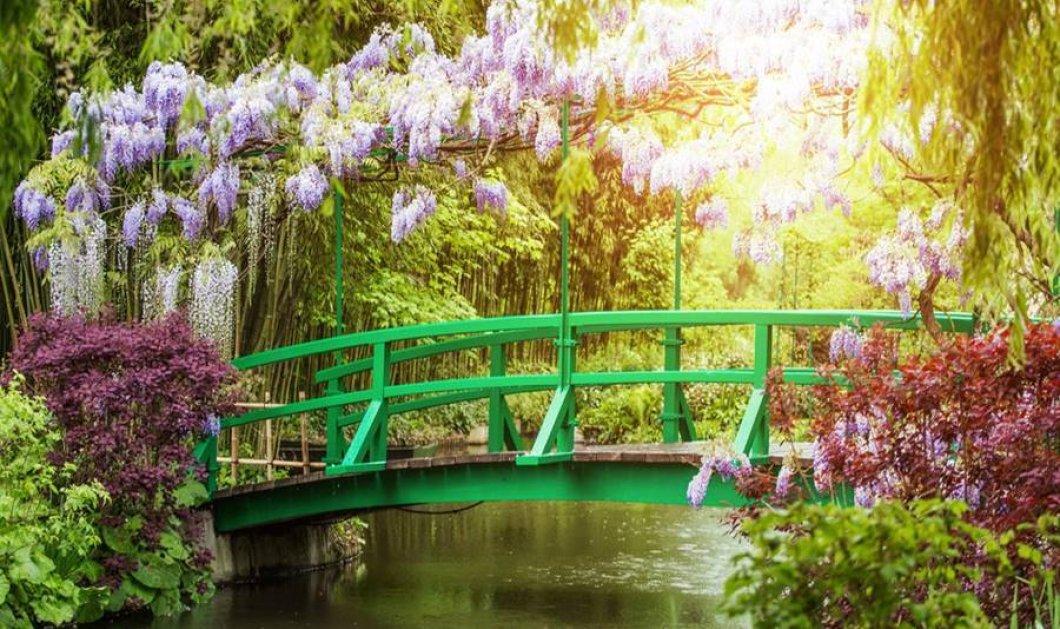 Αυτοί είναι οι ωραιότεροι και πιο εντυπωσιακοί κήποι στον κόσμο - Πού βρίσκονται; (φωτό) - Κυρίως Φωτογραφία - Gallery - Video