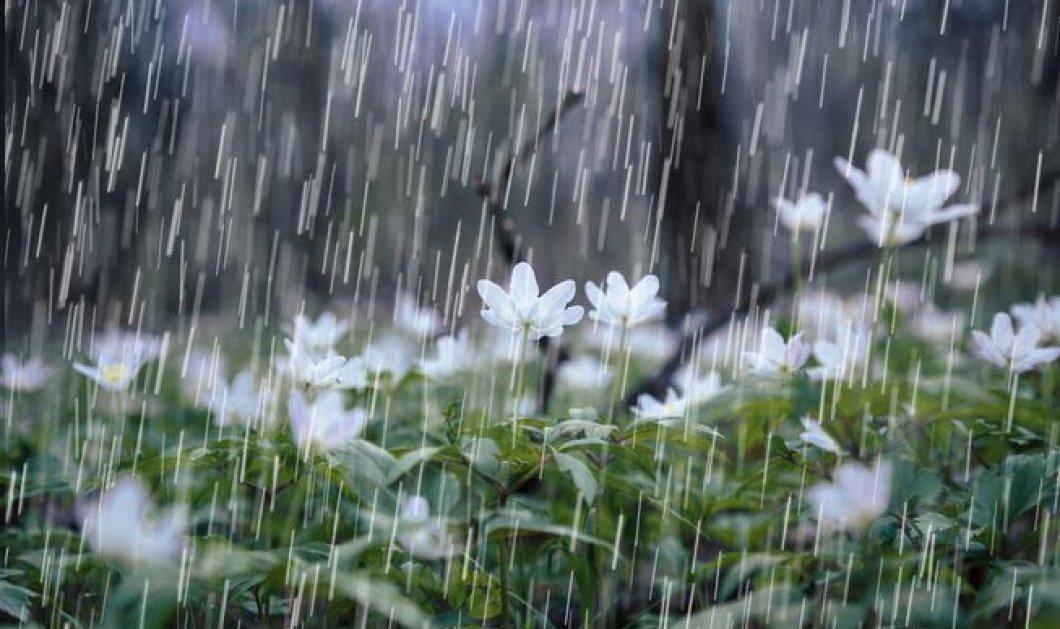 Καιρός: Η άνοιξη ξέχασε να έρθει - Επιμένει η κακοκαιρία με βροχές και καταιγίδες  - Κυρίως Φωτογραφία - Gallery - Video