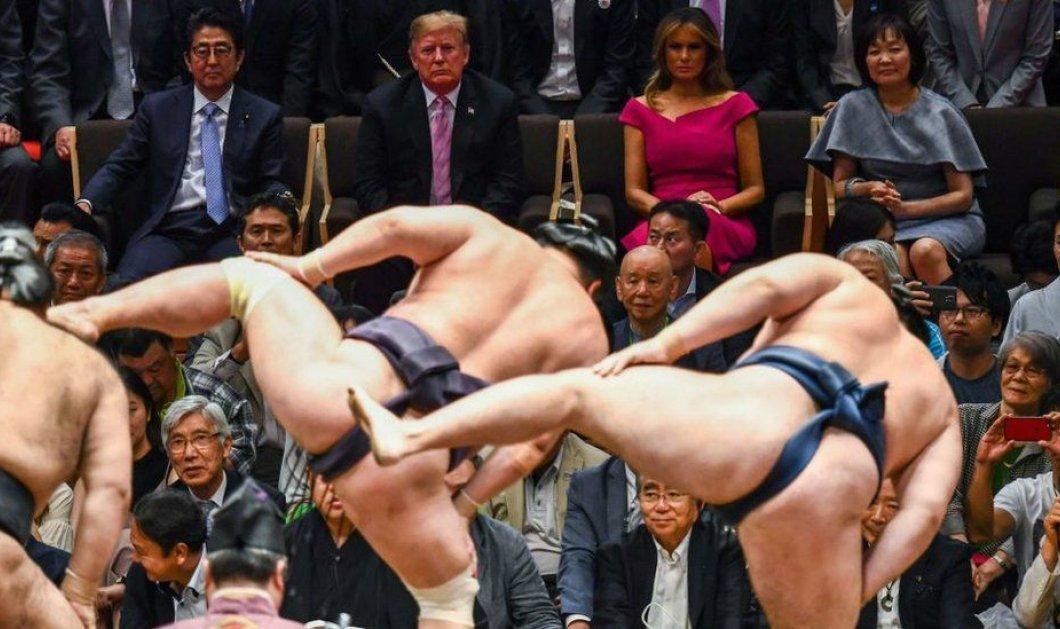 """Η Μελάνια Τραμπ πήγε να δει σούμο με τον άνδρα της - Αποκαλυπτικό φούξια φόρεμα & στάση """"Παρθενόπης"""" (φώτο)  - Κυρίως Φωτογραφία - Gallery - Video"""