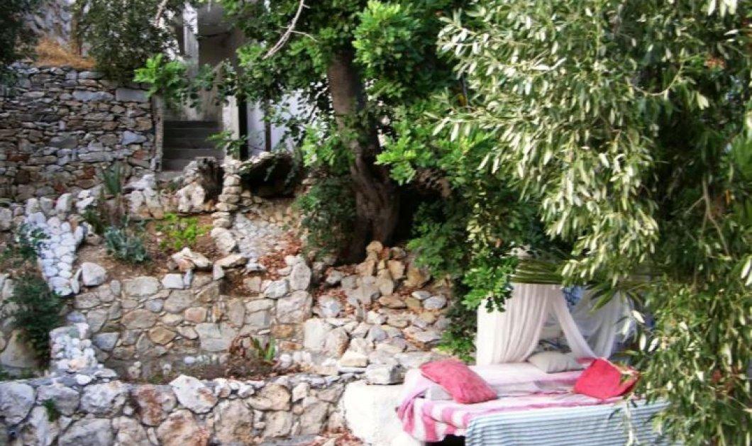 Αirbnb: Topwoman η Κρητικιά που νοικιάζει κρεβάτια κάτω από τα αστερία στον κήπο της (βίντεο) - Κυρίως Φωτογραφία - Gallery - Video