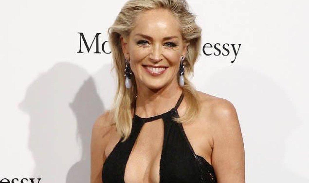 Σάρον Στόουν: Ολική μεταμόρφωση: Με κοντό ξανθό, καρέ μαλλί (φωτό) - Κυρίως Φωτογραφία - Gallery - Video