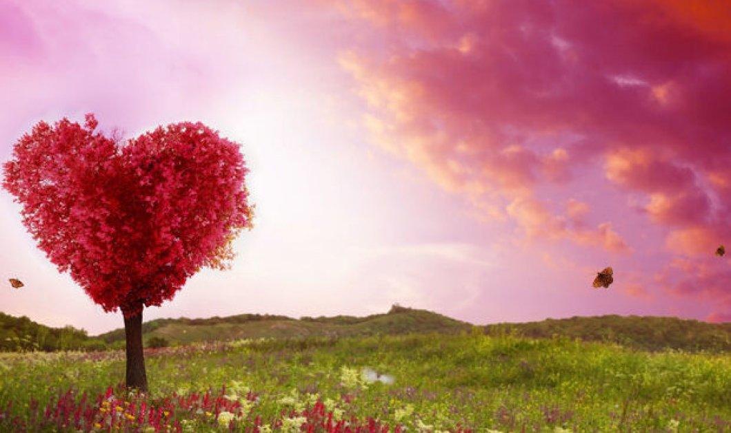 Σήμερα στο ζωδιακό κύκλο ο έρωτας έχει την τιμητική του! - Δες αναλυτικά τις προβλέψεις - Κυρίως Φωτογραφία - Gallery - Video