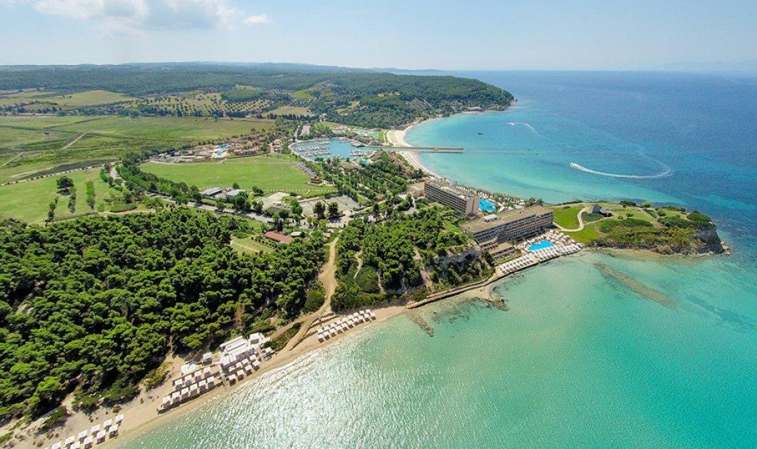 Good News: Στα World Travel Awards το Sani Resort αναδείχθηκε κορυφαίο θέρετρο για οικογένειες στην Ευρώπη - Κυρίως Φωτογραφία - Gallery - Video