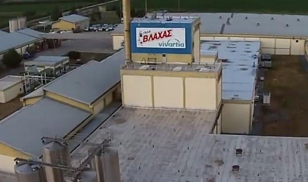 """Κρίμα: Κλείνει το εργοστάσιο του """"Γάλα Βλάχας"""" μετά από 45 χρόνια - Κυρίως Φωτογραφία - Gallery - Video"""