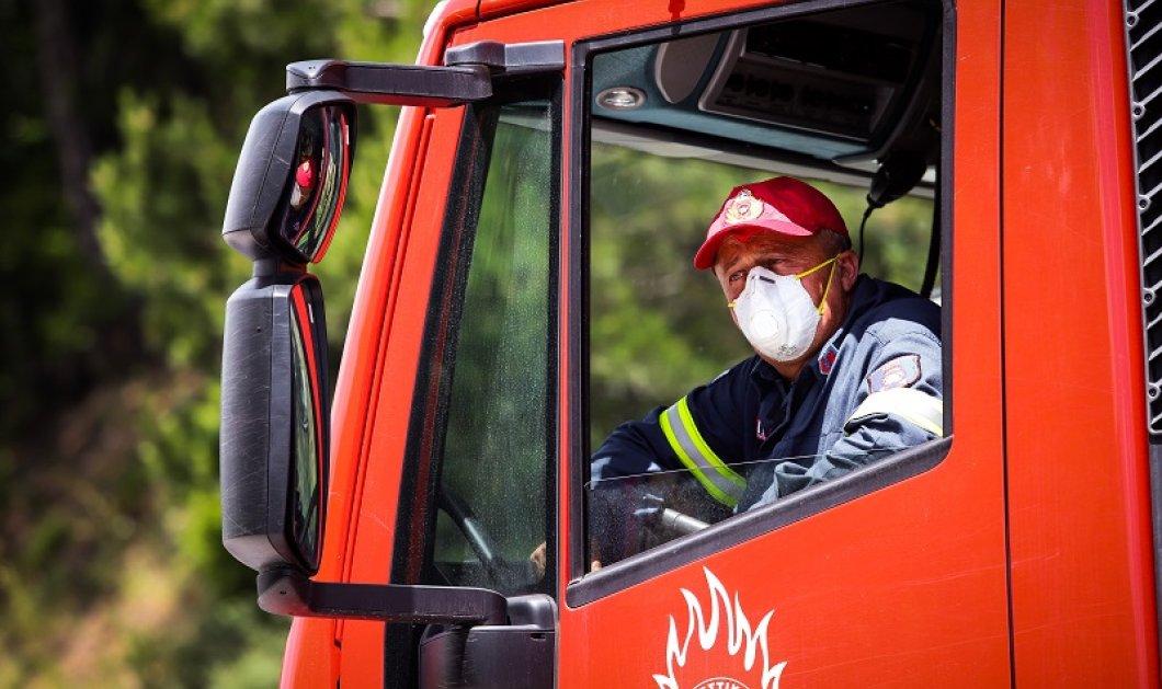 Μεγάλη φωτιά στα Μέγαρα – Απειλούνται σπίτια (φωτό) - Κυρίως Φωτογραφία - Gallery - Video