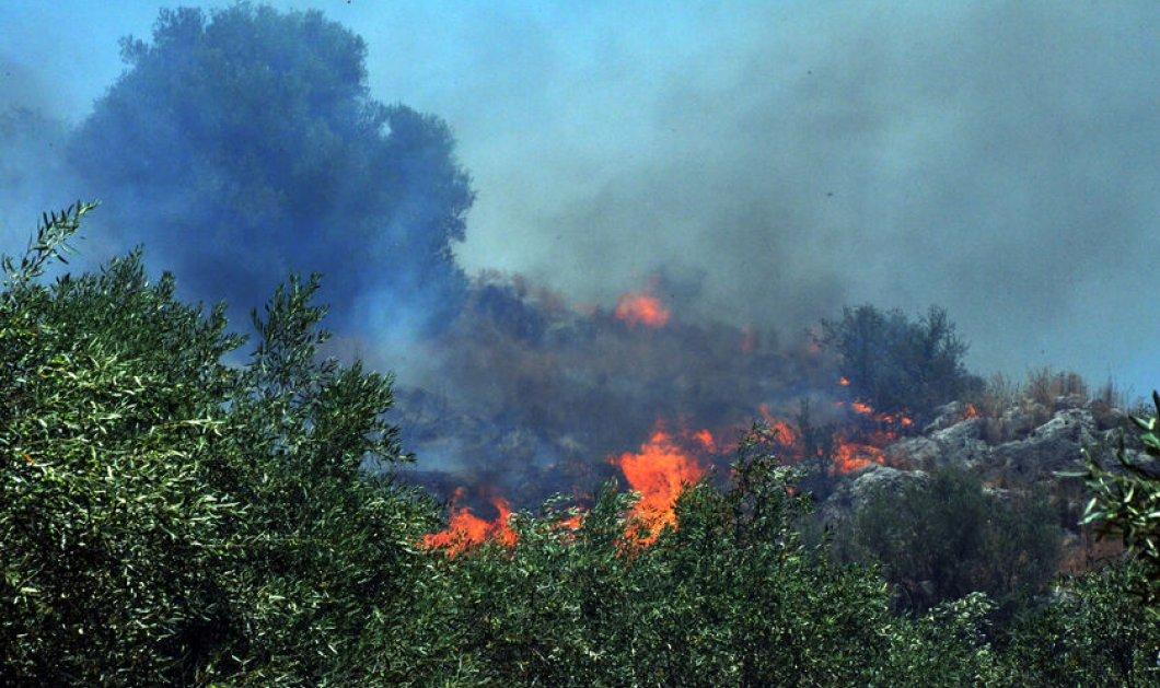 Μεγάλη προσοχή σήμερα: Yψηλός κίνδυνος πυρκαγιάς στην Αττική και τη Στερεά Ελλάδα - Κυρίως Φωτογραφία - Gallery - Video