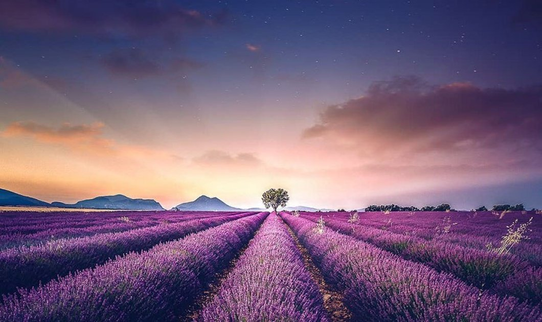 Δεν θα βαρεθώ ποτέ να ηρεμώ απολαμβάνοντας χωράφια με ανθισμένες μοβ λεβάντες -  Από τα ωραιότερα εδώ (φώτο) - Κυρίως Φωτογραφία - Gallery - Video