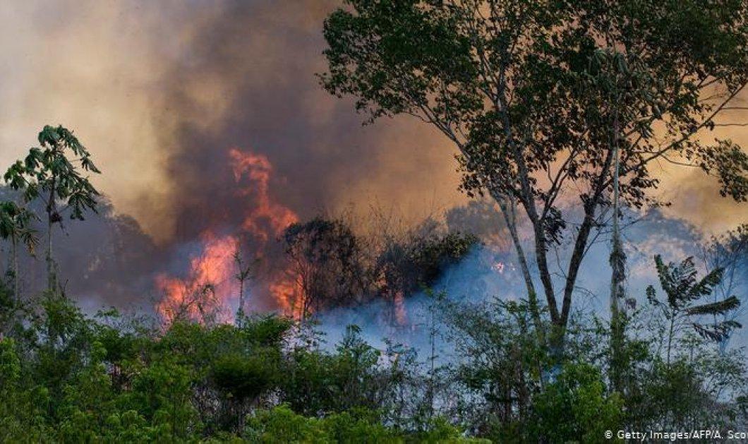 «Αμαζόνιος SOS»: Ο Μπολσονάρου υπογράμμισε πως δεν υπάρχουν πόροι για την αντιμετώπιση των πυρκαγιών  - Κυρίως Φωτογραφία - Gallery - Video