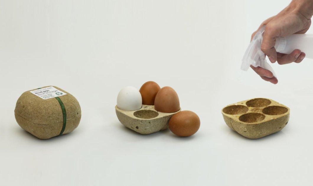 Made in Greece η βραβευμένη Biopack – Η συσκευασία αυγών του Γιώργου Μπόσνα που φυτεύεται & «ανθίζει» (φώτο) - Κυρίως Φωτογραφία - Gallery - Video