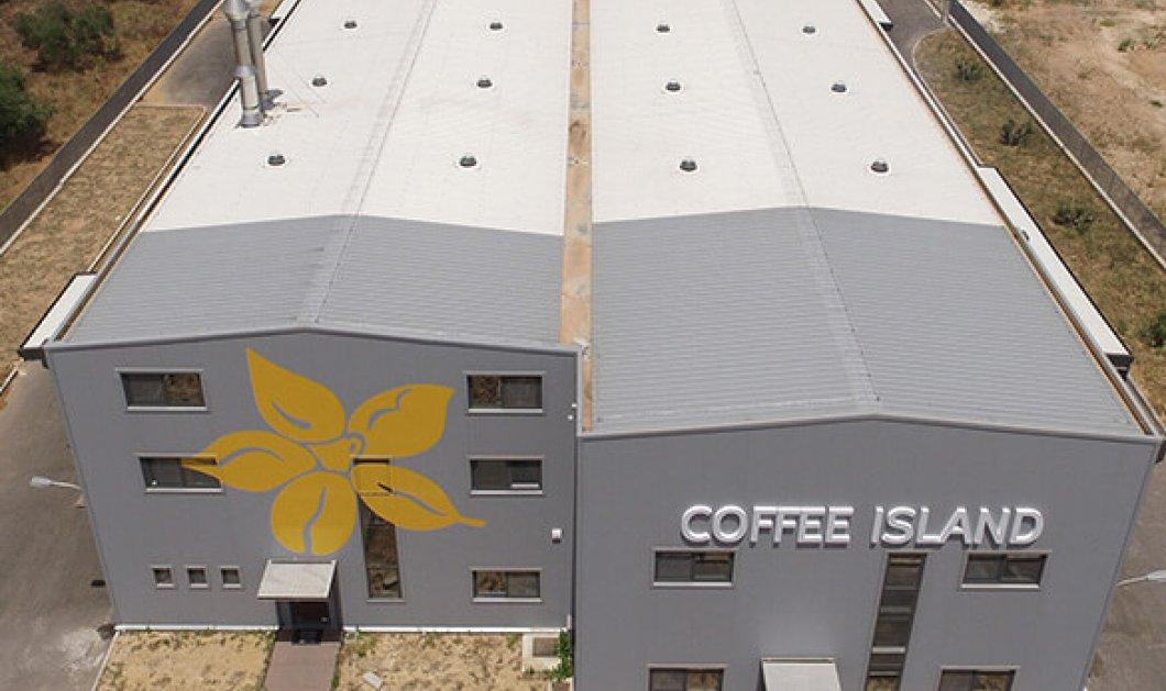 Made in Greece η Coffee Island: 1 από τις 1000 ταχύτερα αναπτυσσόμενες εταιρείες της Ευρώπης - Κυρίως Φωτογραφία - Gallery - Video