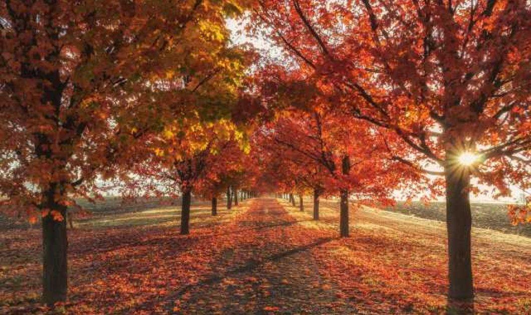 38 πράγματα που μας κάνουν ευτυχισμένους το Σεπτέμβριο - Άντε και καλό μας μήνα! - Κυρίως Φωτογραφία - Gallery - Video