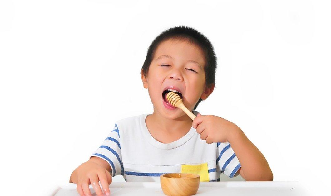 Δείτε υγιεινές επιλογές για πρωινό και Σνακ για τη νέα σχολική χρονιά - Κυρίως Φωτογραφία - Gallery - Video