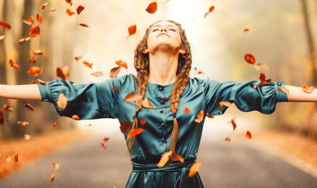 Γιατί το φθινόπωρο είναι η εποχή της ευγνωμοσύνης; - Κυρίως Φωτογραφία - Gallery - Video