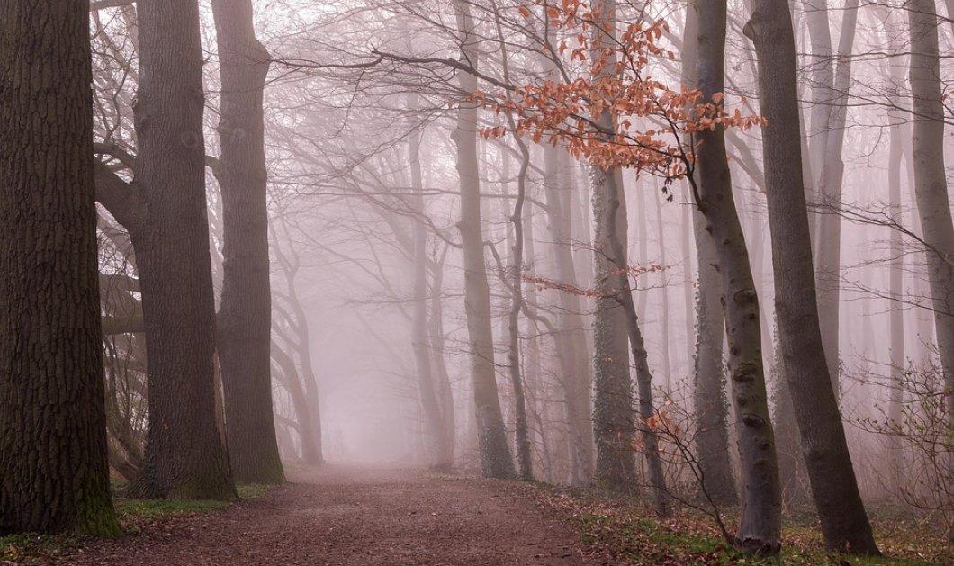 Καιρός: Με αρκετή συννεφιά η Πέμπτη, λίγες βροχές και σκόνη - Κυρίως Φωτογραφία - Gallery - Video