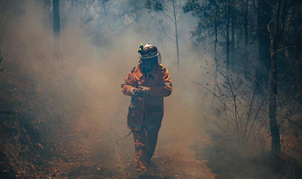"""Φώτο και βίντεο από το """"καπνισμένο"""" Σίδνεϊ: Ο καπνός από τις καλοκαιρινές φωτιές σκέπασε την πανέμορφη πόλη - Κυρίως Φωτογραφία - Gallery - Video"""