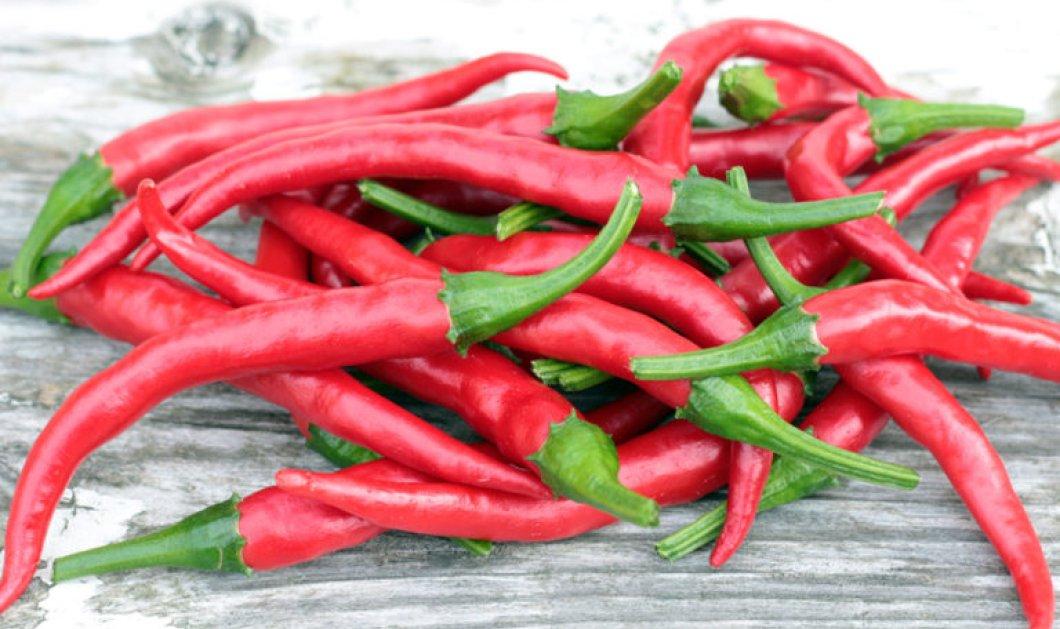 Νέα έρευνα αποκαλύπτει: Οι πιπεριές τσίλι μειώνουν τον κίνδυνο πρόωρου θανάτου από έμφραγμα ή εγκεφαλικό - Κυρίως Φωτογραφία - Gallery - Video