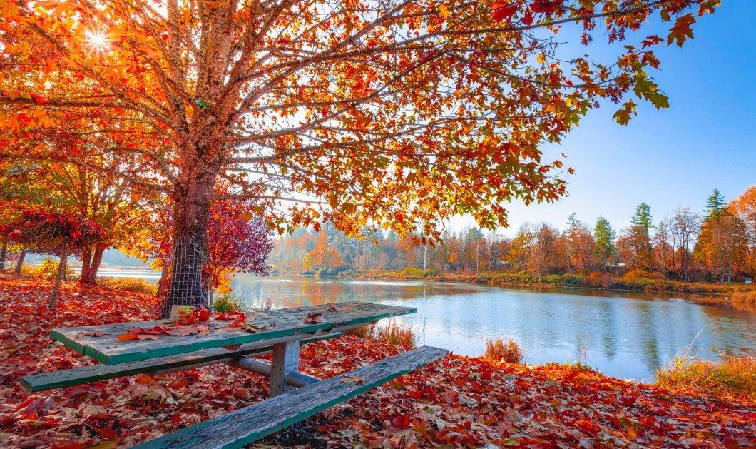 Νοέμβριος 2019: O δεύτερος θερμότερος Νοέμβριος τα τελευταία 140 χρόνια  - Κυρίως Φωτογραφία - Gallery - Video