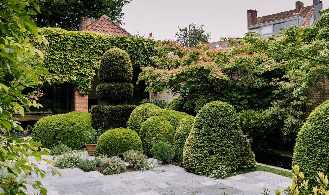 Ανακαλύψαμε έναν υπέροχο κήπο πάνω σε ταράτσα στην παραμυθένια πόληBruges - Φώτο  - Κυρίως Φωτογραφία - Gallery - Video