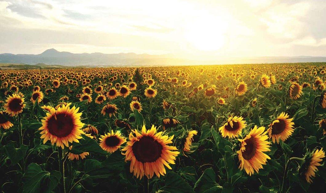 Καλός ο καιρός σήμερα με ηλιοφάνεια - Μικρή άνοδος της θερμοκρασίας  - Κυρίως Φωτογραφία - Gallery - Video