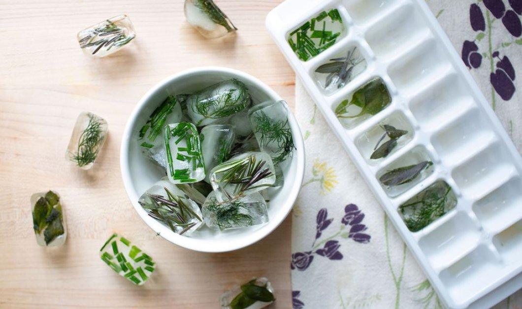 Πως μπορείτε να κάνετε παγάκια με αρωματικά βότανα;  - Κυρίως Φωτογραφία - Gallery - Video