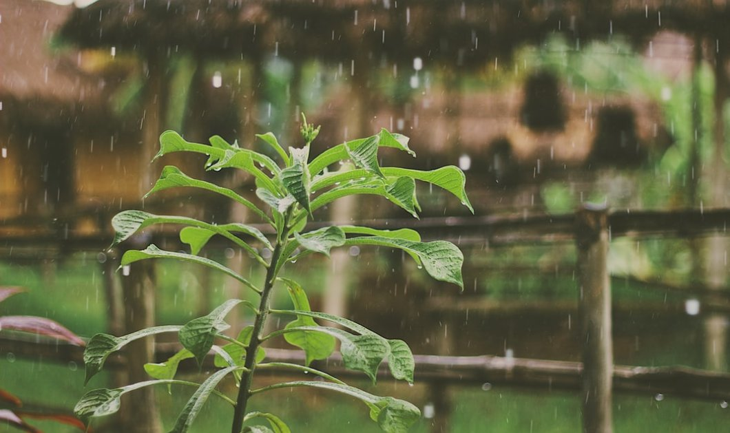 Συννεφιασμένος ο καιρός σήμερα Τετάρτη - Σε ποιες περιοχές θα βρέξει;  - Κυρίως Φωτογραφία - Gallery - Video