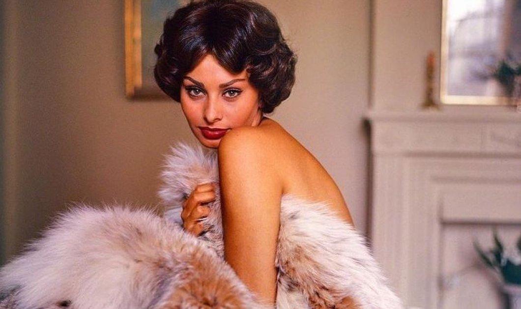 Vintage Pics: Εκπληκτικά σπάνια ενσταντανέ της Σοφίας Λόρεν με την αγαπημένη της αδερφή (φώτο) - Κυρίως Φωτογραφία - Gallery - Video