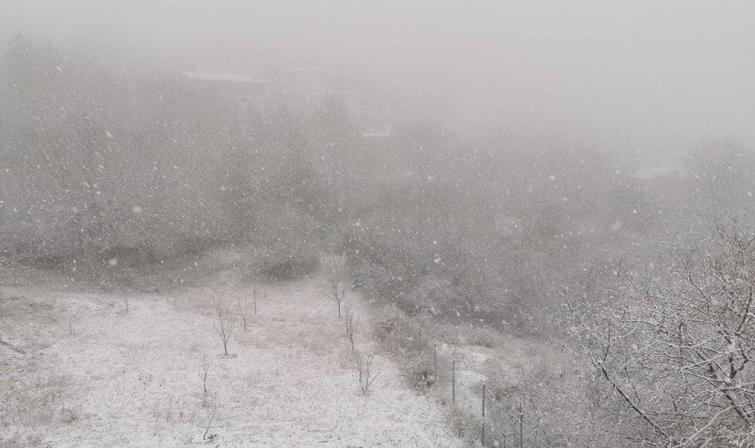 Χιόνια στη Β. Ελλάδα: Στα λευκά o Χορτιάτης - Που αναμένεται να χιονίσει τις επόμενες ώρες (φωτο - βίντεο) - Κυρίως Φωτογραφία - Gallery - Video