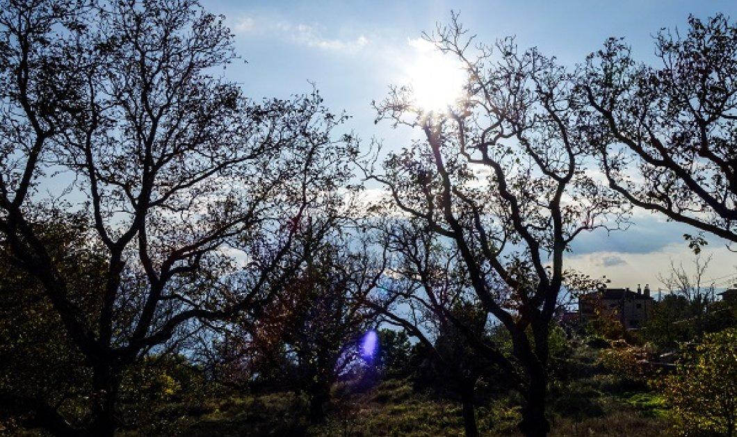 Αίθριος καιρός σήμερα & άνοδος της θερμοκρασίας - Κυρίως Φωτογραφία - Gallery - Video