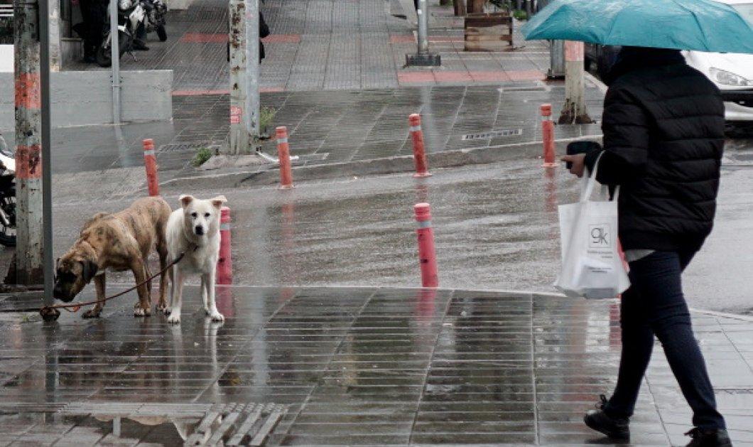 Κυριακή με βροχές και καταιγίδες - Ασθενείς χιονοπτώσεις - Κυρίως Φωτογραφία - Gallery - Video