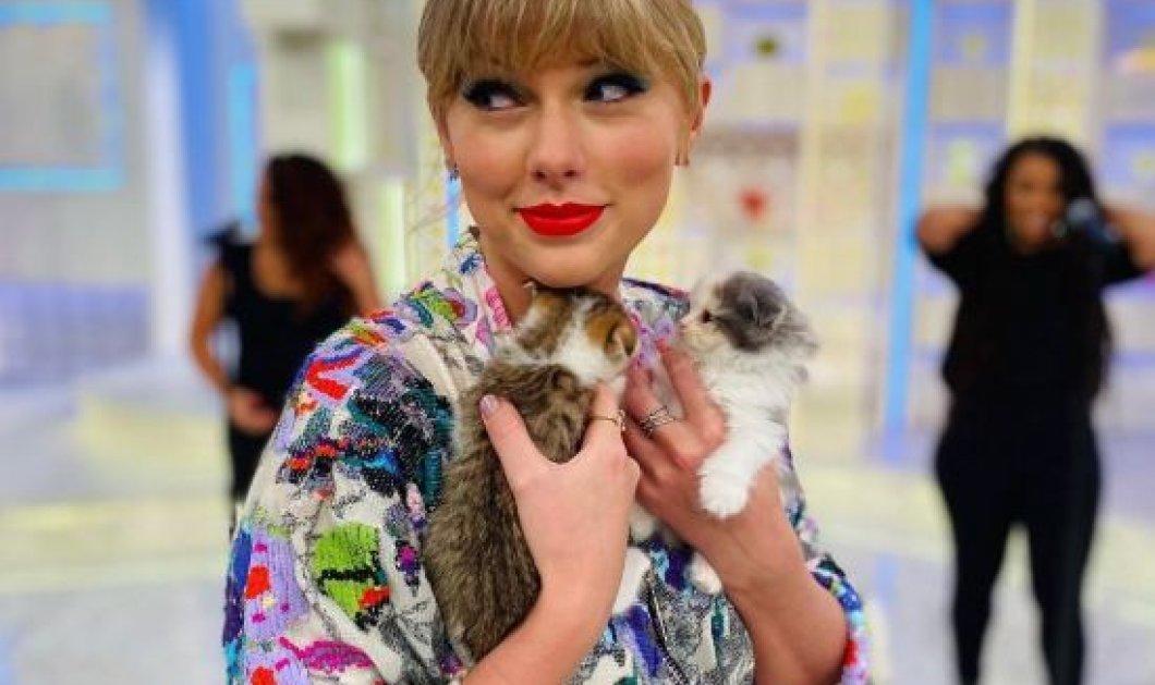 Γάτα η Taylor Swift: Τις λατρεύει, τις περιποιείται, ζουν σαν πριγκίπισσες κοντά της – Δείτε φωτό - Κυρίως Φωτογραφία - Gallery - Video