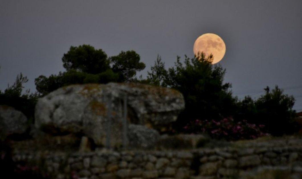 H Μαίρη Μακρογαμβράκη ατο eirinika : Η νέα σελήνη  ζητάει να αντικαταστήσετε το παλιό με νέο με όποιο κόστος - Λέοντες Σκορπιοί Ταύροι προσοχή  - Κυρίως Φωτογραφία - Gallery - Video