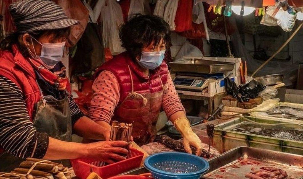 Εδώ γεννήθηκε ο κορωνοϊός: Φωτό - βίντεο απο την υπαίθρια αγορά της Ουχάν που άνοιξε τις πόρτες της ξανά - Κυρίως Φωτογραφία - Gallery - Video