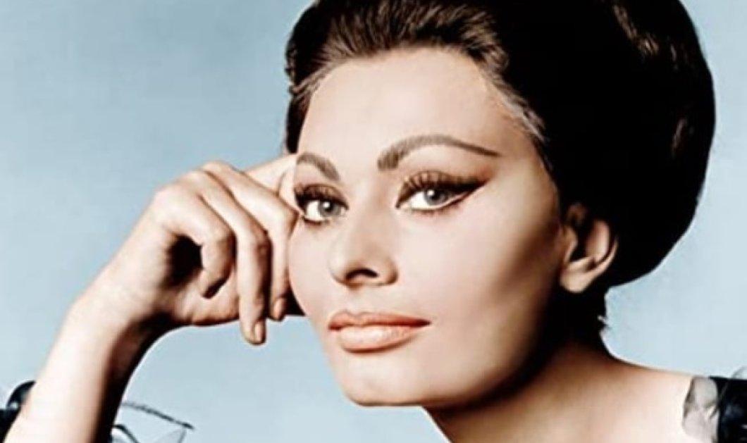Vintage: Όταν η Σοφία Λόρεν σήκωνε τα μαλλιά της σε χαλαρό ανέμελο στυλ & οι θαυμαστές της γέμιζαν τις αίθουσες των σινεμά.... προ κορωνοϊού (Φωτό)  - Κυρίως Φωτογραφία - Gallery - Video