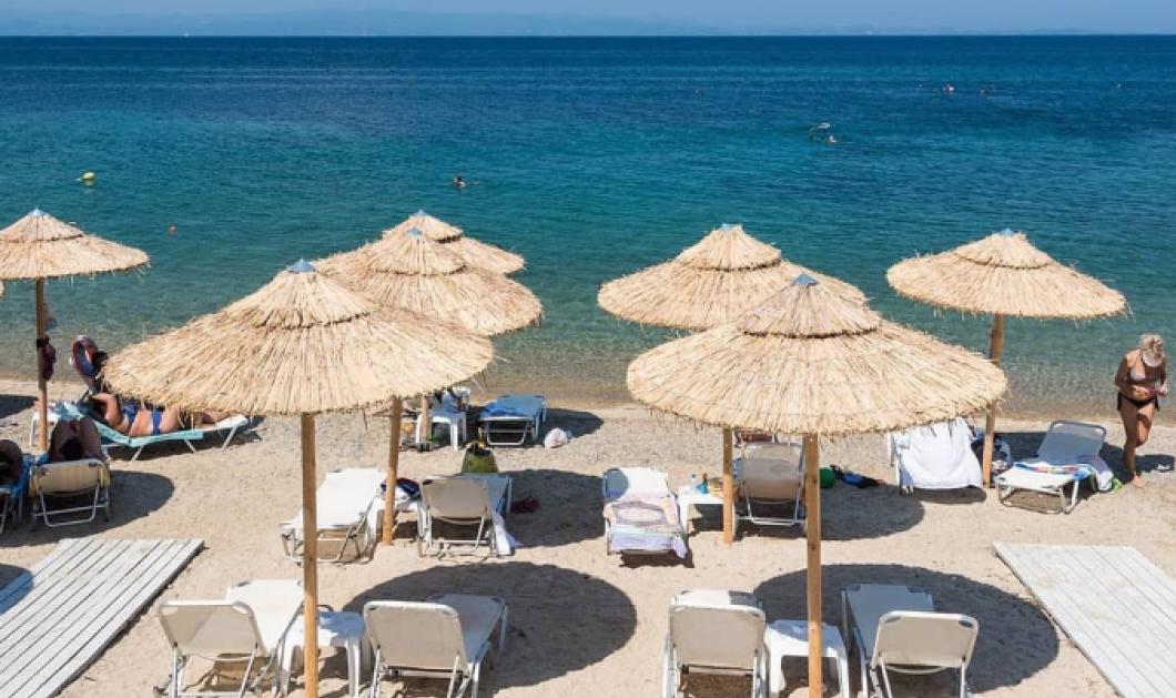 Πρόεδρος ξενοδόχων Χαλκιδικής: Τραπεζάκια στο κύμα και χταποδάκι στο πιάτο ζητούν οι επαγγελματίες στον τουρισμό για το φετινό καλοκαίρι - Κυρίως Φωτογραφία - Gallery - Video