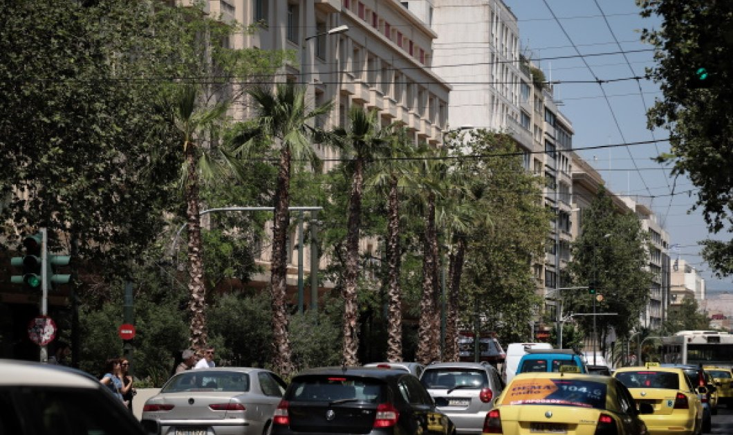 Promenade des Anglais η οδός Πανεπιστημίου: Τροπικοί φοίνικες με τεράστιες λεύκες ζαρντινιέρες αλλάζουν το τοπίο (Φωτό)  - Κυρίως Φωτογραφία - Gallery - Video