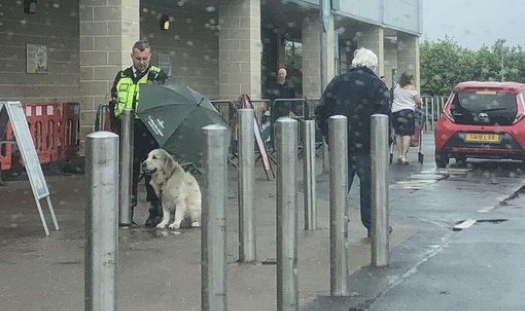 Κράτησε ομπρέλα στον σκύλο για να μη βραχεί! Ο σεκιουριτάς που έγινε παγκοσμίως viral για την καλή του πράξη (Φωτό)  - Κυρίως Φωτογραφία - Gallery - Video