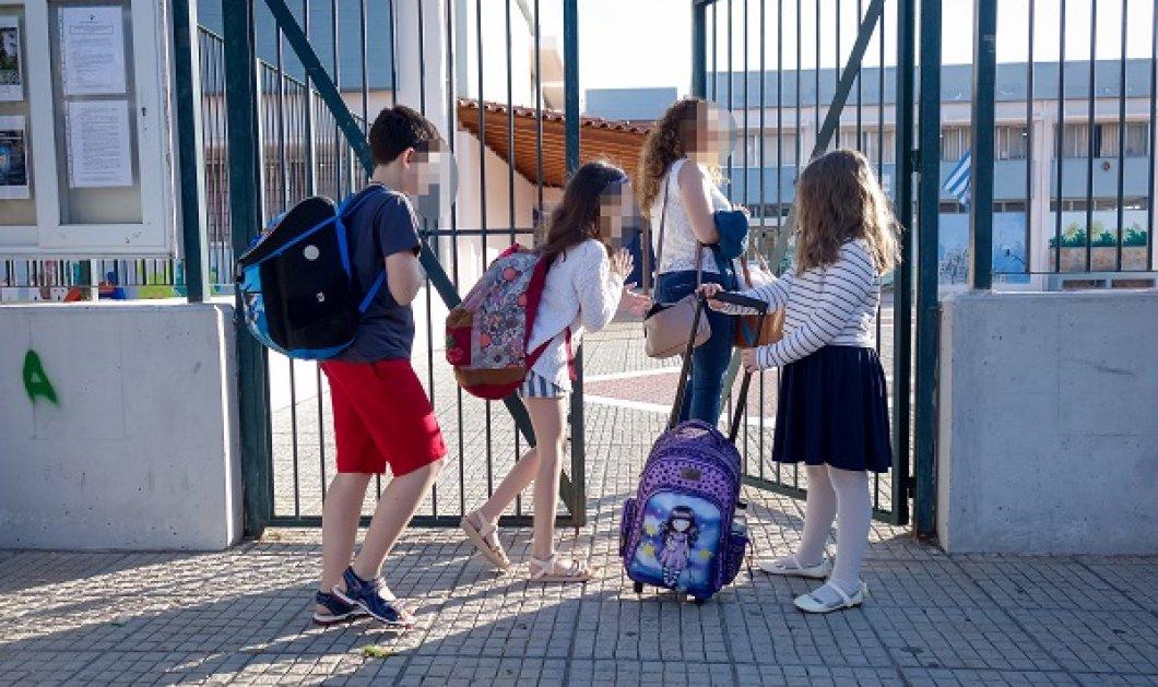 Με πλήρη σύνθεση & αυστηρά μέτρα θα λειτουργήσουν τα σχολεία από Σεπτέμβρη - Μάσκες, χωριστά διαλείμματα  - Κυρίως Φωτογραφία - Gallery - Video