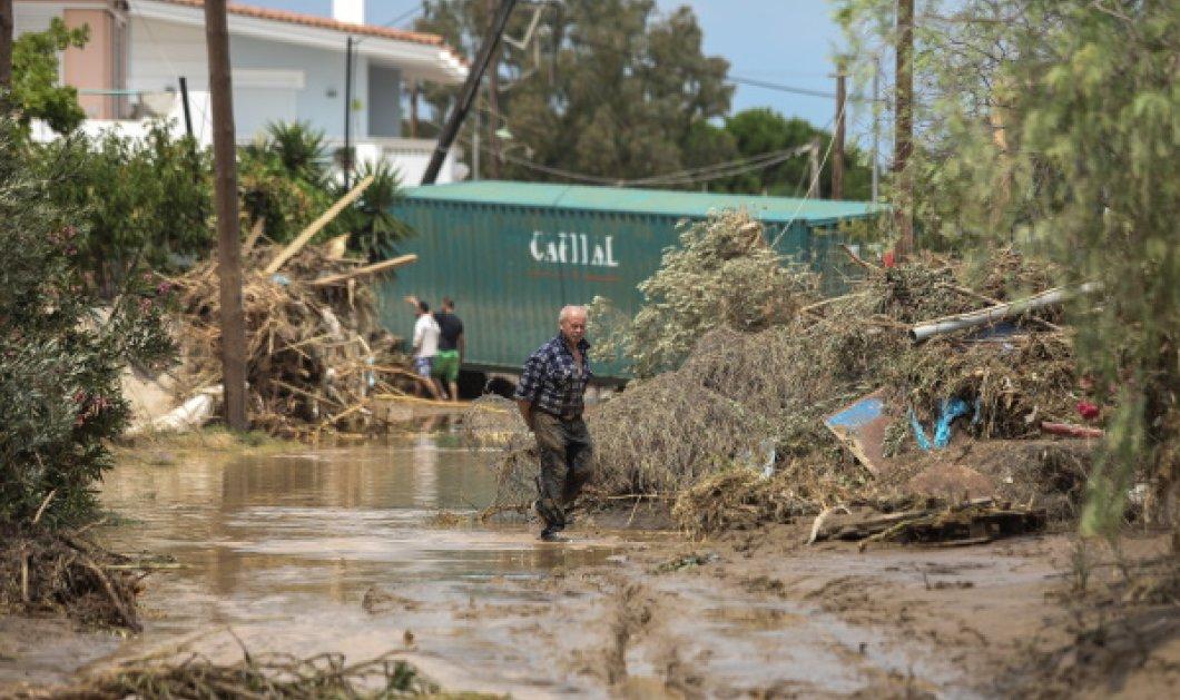 Εύβοια πλημμύρες: Κλιμάκιο ψυχολόγων στέλνει το υπουργείο Υγείας (Φωτό) - Κυρίως Φωτογραφία - Gallery - Video