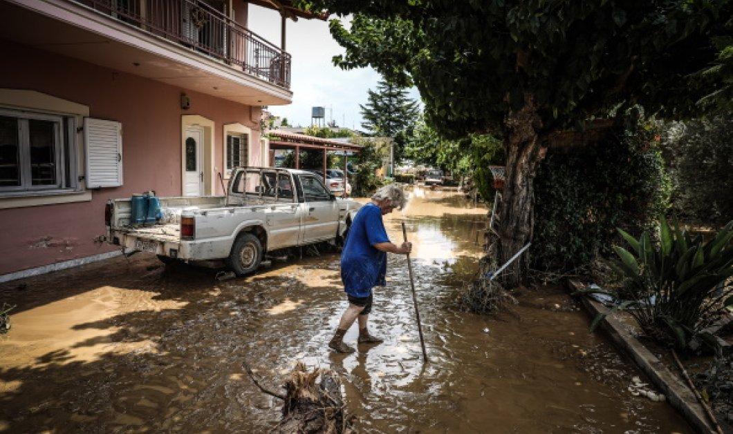 Εύβοια- Πλημμύρες: Συγκλονίζουν οι μαρτυρίες των κατοίκων στο Λευκαντί – «Ξυπνήσαμε & είδαμε ποτάμια νερού & λάσπης» (Φωτό & Βίντεο)  - Κυρίως Φωτογραφία - Gallery - Video