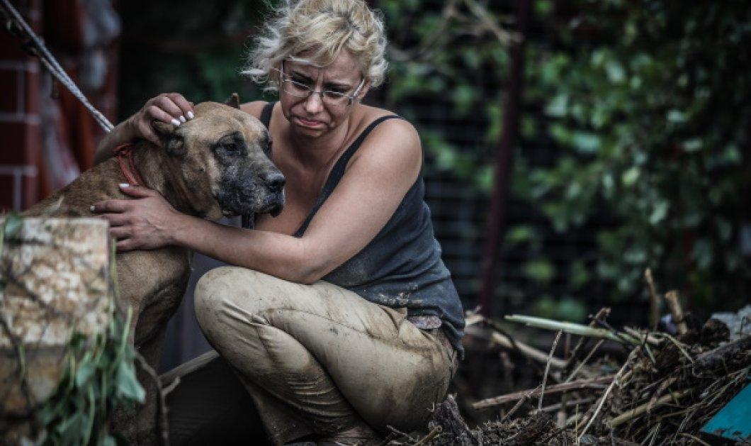 Εύβοια- Πλημμύρες: Φωτορεπορτάζ από την πρωτοφανή καταστροφή - Καρέ καρέ η τραγωδία στο νησί με 7 νεκρούς & ανυπολόγιστες ζημιές (Φωτό)  - Κυρίως Φωτογραφία - Gallery - Video